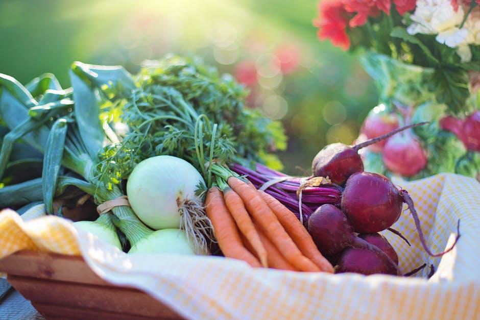 蔬菜.jpeg