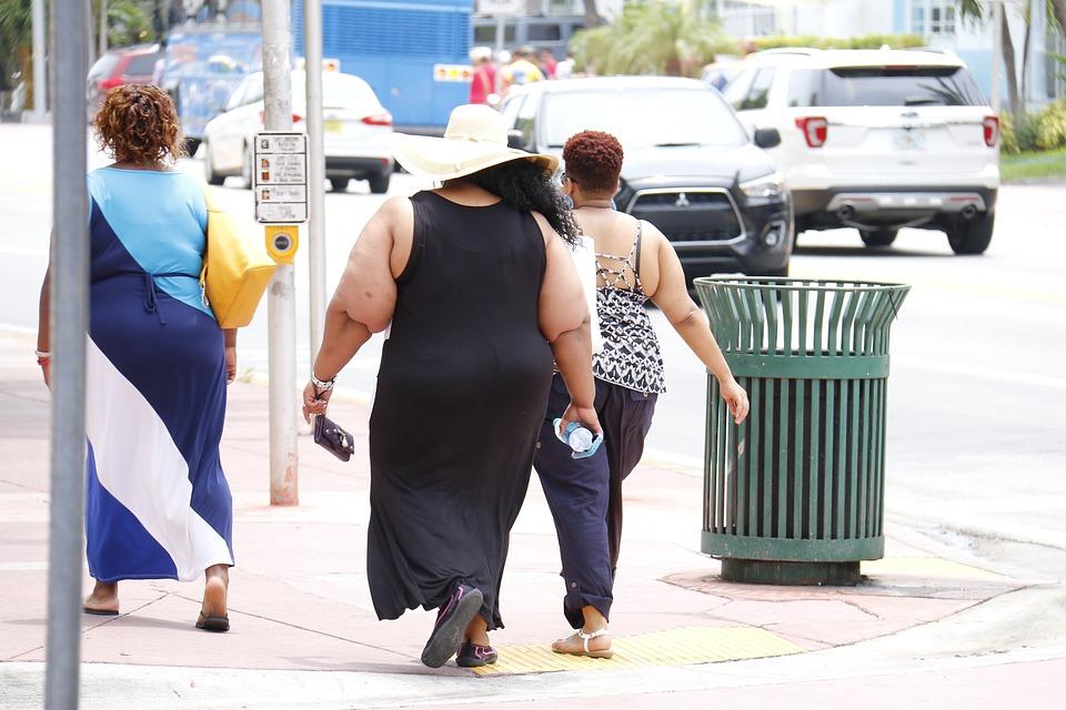 肥胖 (2).jpg